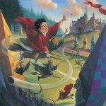 Harry Potter: Quidditch-Deluxe
