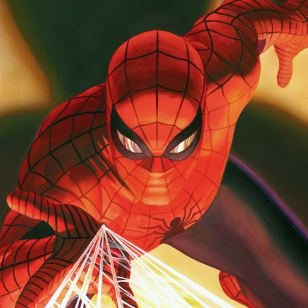 Visions: Spider Man